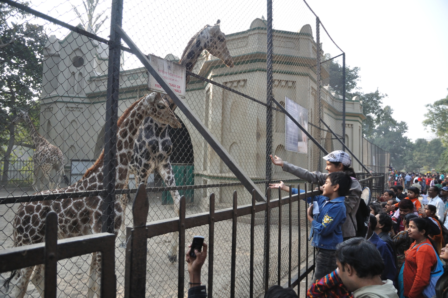 Famous Zoological Gardens in India